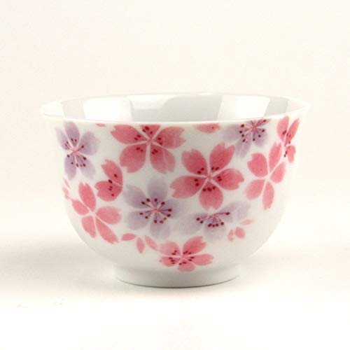 Japanese Teacup Porcelain Minoyaki Cherry Blossoms Set of 2