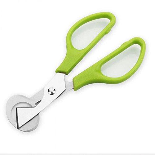 kokome Quail Egg Shell Cutters Scissors Small Quail Egg Cracker Opener Cigar Cutter Stainless Steel Blade Tool