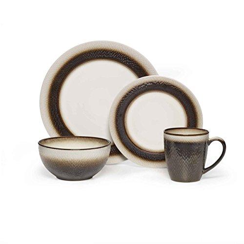 Pfaltzgraff Eclipse 16 Piece Dinnerware Set Stoneware Bronze