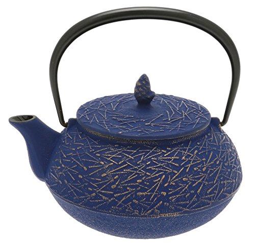 Iwachu 480-967 Japanese Iron Tetsubin Teapot Europa Blue