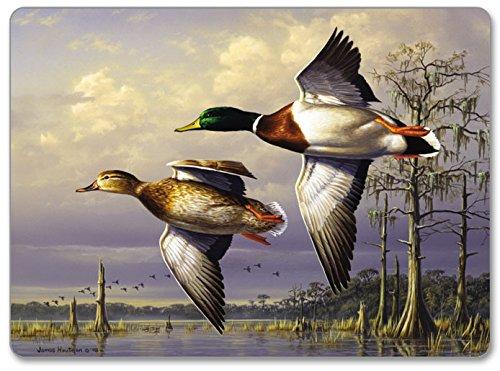 CounterArt Hardboard Placemat Water Birds Set of 2