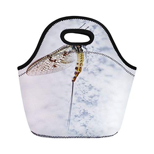 Semtomn Lunch Bags Bow Green Animal Mayfly Ephemera Danica Antennae Cutlery Day Neoprene Lunch Bag Lunchbox Tote Bag Portable Picnic Bag Cooler Bag