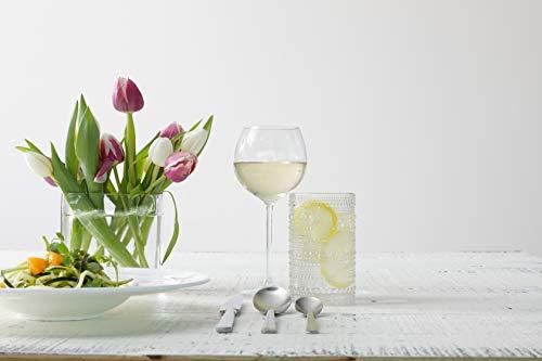 Schott Zwiesel Tritan Crystal Note Stemware Set of 6 White Wine Glass 15-Ounce Clear