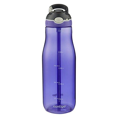 Contigo AUTOSPOUT Straw Ashland Water Bottle 40oz Grapevine