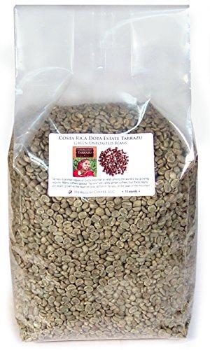 Costa Rica Dota Estate Green Unroasted Coffee Beans 10 LB