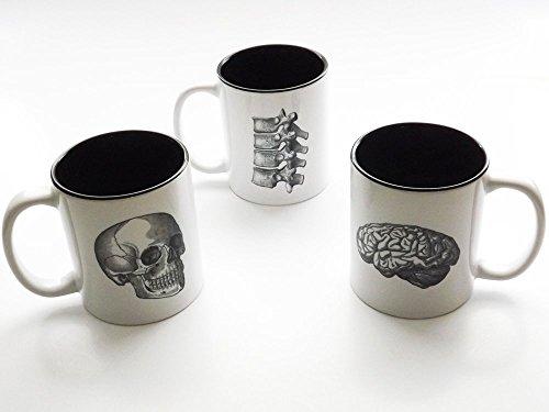 three Anatomy ceramic coffee Mugs set doctor office teacher gift spine brain skull goth kitchen decor