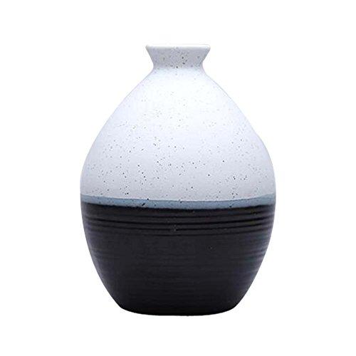 East Majik Sake Set Used as a VaseJardiniere Sake Bottle Ceramics Flagon Wine Pot