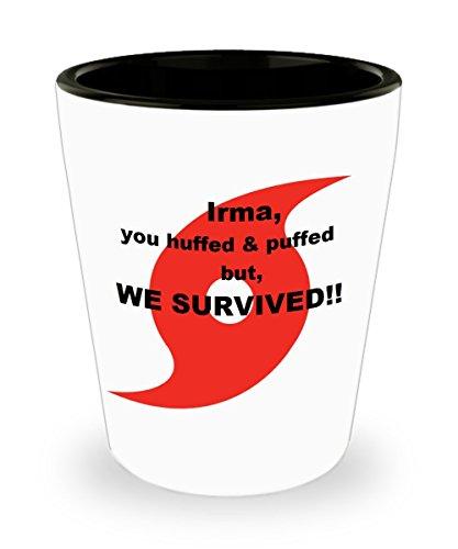 Funny Shot Glass - Hurricane Irma We Survived Ceramic 15 oz Custom Printed Shot Glass Collectible Novelty Funny Gag Gift