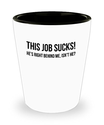 Funny work gift Work sucks adulting is hard gift for co-worker friend shot glass