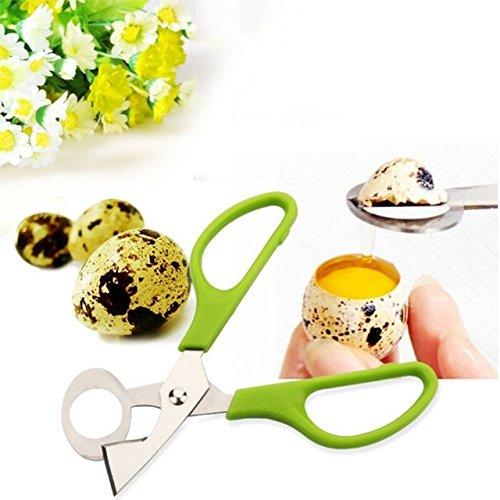 Stainless Steel Pigeon Quail Egg Scissors Egg Cutter Egg Opener Kitchen Gadget Tools quail egg cutteregg topper soft boiled egg cutteregg cracker eggshell cutterchrismast halloween gift