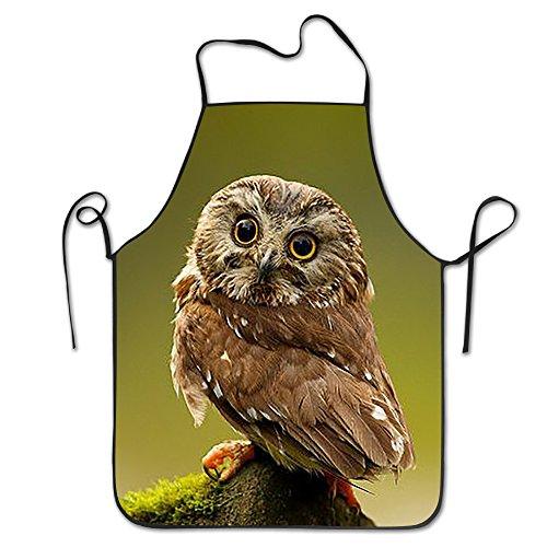 Staring Owl Novelty Baking Standard Apron 100 Polyester For Men Women