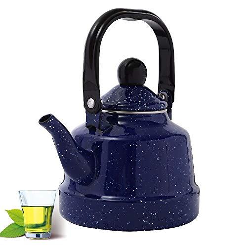 Teapot Enamel Mini Black Cast Iron Kettle with Filter Blue Enamel Kettle Induction Cooker Gas General Creative Starry Porcelain Kettle11l