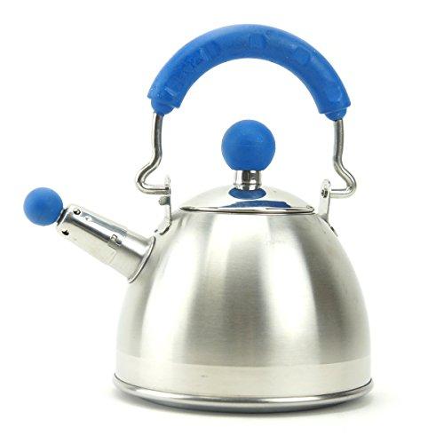Whistling Tea Kettle Mini Stainless Steel Teapots Hot Water Kettle Blue Silver