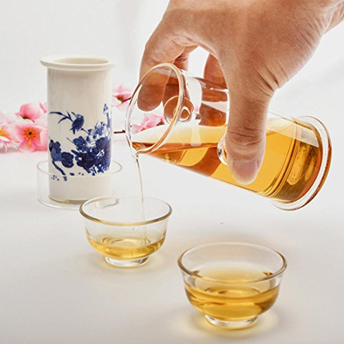 Hoobar Glass Kungfu Tea Set Teapot Glass with Ceramic Infuser for Gongfu Tea Set  Tea Tray