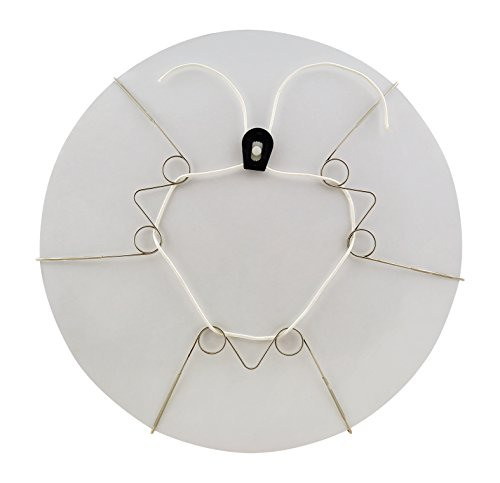 Display Buddie Large Adjustable Plate Holder Decorative Plate Wall Hanger  Plate Hangers for The Wall  Vase Hanger Bowl Hanger and More Hang Display Decorative Plates on Your Wall  Size L