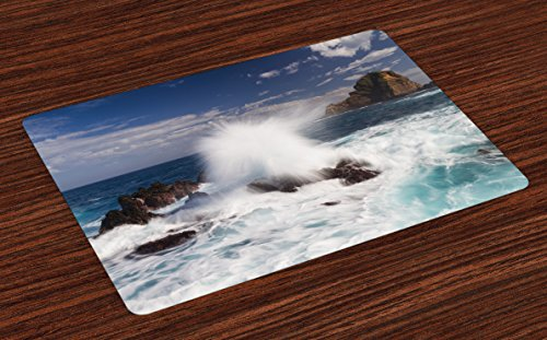 Coastal Place Mats Set of 4 by Lunarable Giant Waves on Rocks with Splashes in South Portugal Coast Surfing Theme Picture Washable Placemats for Dining Room Kitchen Table Decoration Blue Brown