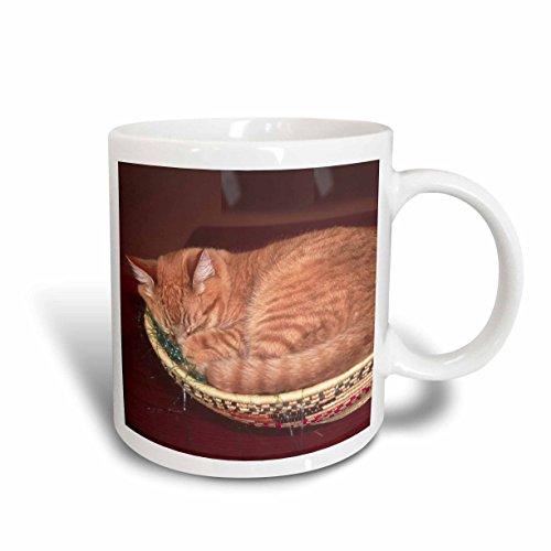 3dRose mug_83708_2 Orange tabby cat asleep in an Easter basket NA02 CSL0214 Charles Sleicher Ceramic Mug 15 oz White
