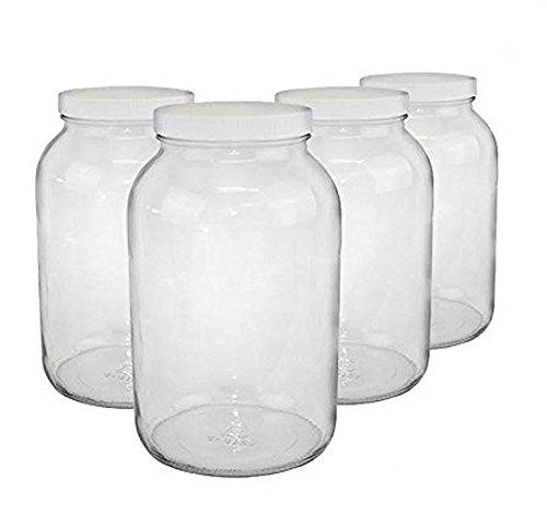 1-gallon USDA Fermentation Glass Jars Set of 4
