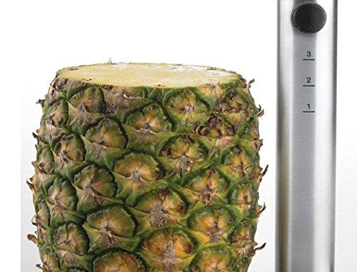 304 Food Grade Stainless Steel Depth Marked Pineapple Corer Slicer Peeler Stem Remover Cutter Fruit Ring Dicer