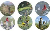 Legacy-Reversible-Pulpboard-Coasters-Boxed-Set-of-6-Songbirds-0.jpg